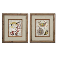 Tropical Waters Framed Art Set/2